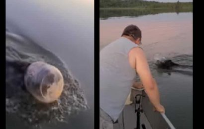 Family out for fishing spots bear stuck in plastic container. Watch what happens next