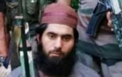 Jammu's Doda is militancy free, say cops after Hizbul terrorist Masood killed in encounter