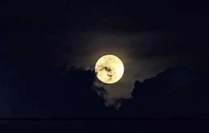Lunar Eclipse 2020: Do you know Strawberry Moon is also called Honey Moon? Here's why