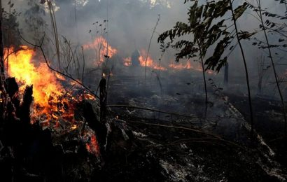 Indonesia to use 'artificial rain' to combat forest fires during dry season this year