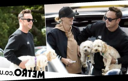 Ant McPartlin is living the dream with his arms full of dogs