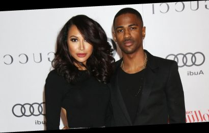 Naya Rivera's Ex-Fiance Big Sean Pushes for Police to Continue Search