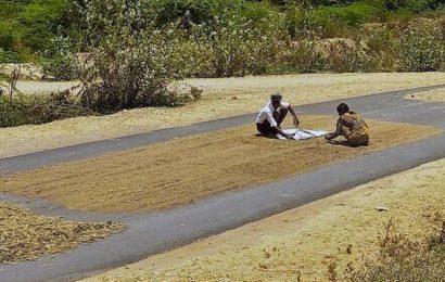 Former UAS-B V-C comes out against threshing crops on public roads
