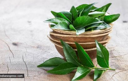 Sunday hair care: Try this curry leaf mask to prevent premature greying