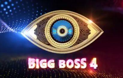 Most controversial Contestants in Bigg Boss 4 Telugu