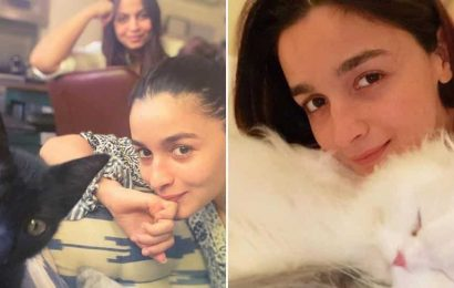 Alia Bhatt reveals how she maintains her calm in the midst of every storm, see pic