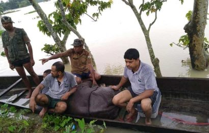 Assam flood situation worsens; 33 lakh people in 28 districts affected