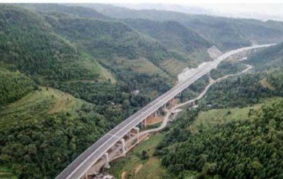 NHAI's elevated Saharanpur-Dehradun road to reduce wildlife casualties