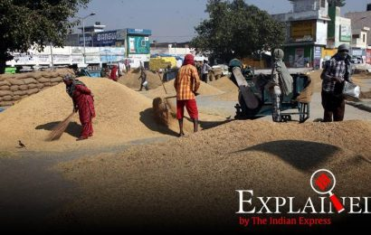 Explained: Why MP's push for inclusion into the GI list of Basmati can hurt India globally