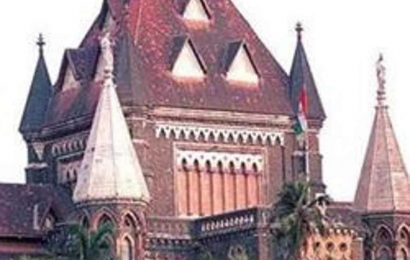 HC raps Maharashtra for inaction against vendors who sold spurious soyabean seeds to farmers
