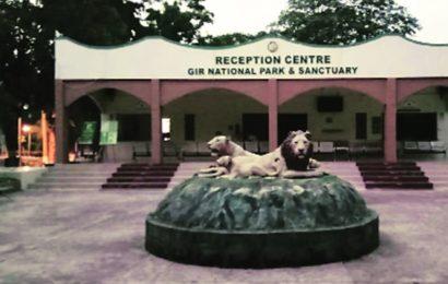 Watchtower to come up at Devaliya safari park