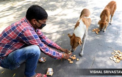 Watch: Team out to vaccinate dogs says attacked by mob in Delhi's Rani Bagh