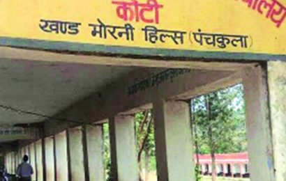 English teacher serves cow panel chief as private secy, 7 students flunk