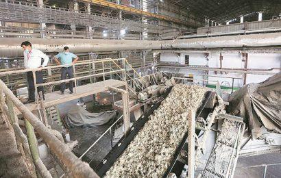 Maharashtra faces new challenge as only 4 of 39 sugar mills fulfill criteria to avail bank guarantees