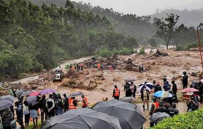 Kerala land has lost immunity, landslides here to stay, says hydro-geologist