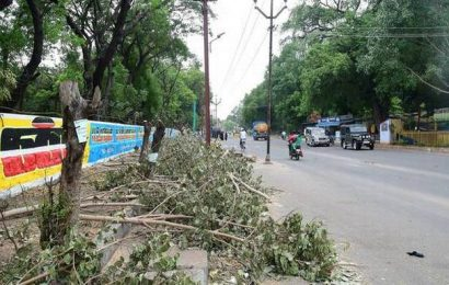 Electric poles on New Jail Road go at last