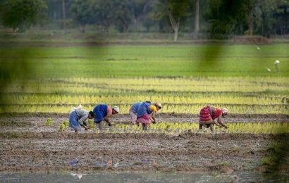 'Agri profit growth may not aid rural demand'