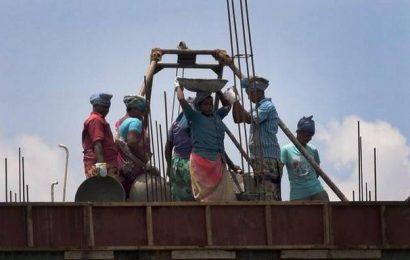HC seeks status report from T.N. construction welfare board
