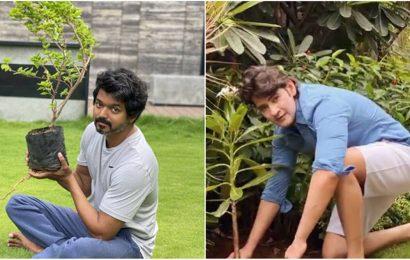 Vijay accepts Mahesh Babu's Green India Challenge, fans hail the superstars