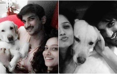 Sushant Singh Rajput and Ankita Lokhande in a priceless photo featuring her 'son', Scotchi
