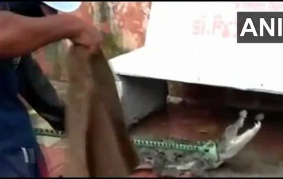 Five-foot crocodile rescued from residential area in Vadodara. Watch