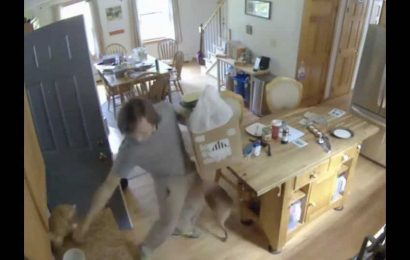 Man grabs cat to stop it from bolting out of the door, then does this out of guilt. Watch