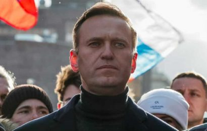 Russia: No signs of crime in Alexei Navalny coma case so far