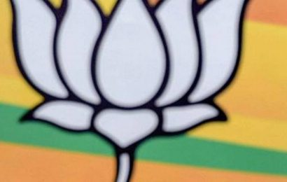 BJP's Kargil unit up in arms against party