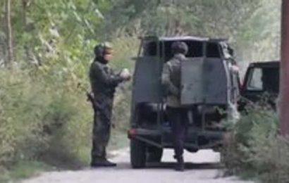 Encounter underway between security forces, terrorists in J-K'S Pulwama