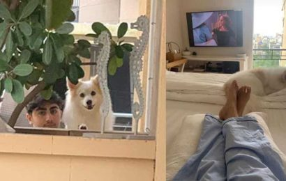 Malaika Arora reunites with family, dog Casper two weeks after testing positive for Covid-19, shares picture from bedroom