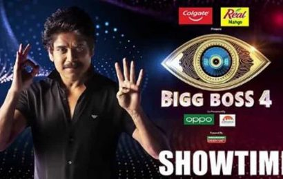 Bigg Boss Telugu 4 with Nagarjuna as host launched, 16 contestants enter the show
