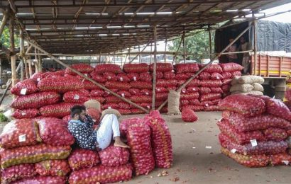 Consider allowing export of pending onion consignments: Bombay HC tells Customs