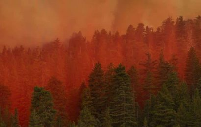 Search crews scour charred Oregon landscape, residents return to rubble as wildfires burn