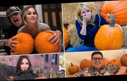 Celebrity Pumpkin Picks — Gourd Lookin'!