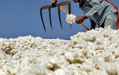'Cotton season ends with over 100 lakh bales stock'