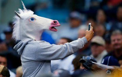 Ahead of mega-IPO plans, Indian unicorns eye new business
