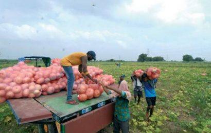Peasants dread contract farming