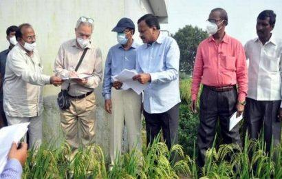 Central team visits Siddipet district