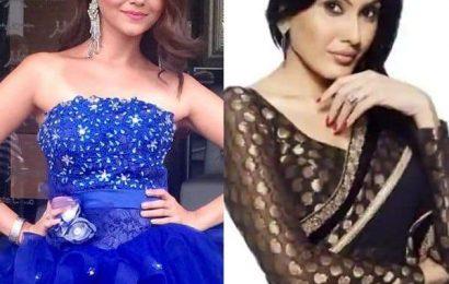 Bigg Boss 14: Kamya Panjabi defends Rubina Dilaik; claims the Shakti actress never followed the show