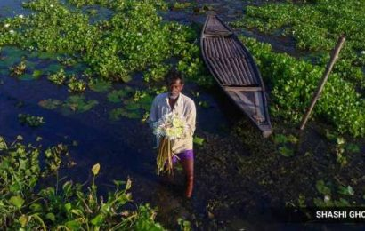 The silver lining: Cyclone and lockdown helps Bengal village become new tourist magnet