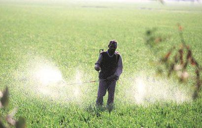 Punjab has 22% of required urea for rabi crops, rail roko plays spoilsport