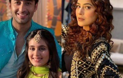 Shaheer Sheikh, Shehnaaz Gill, Sharad Malhotra — here are the TV Instagrammers of the week