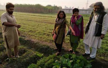 Meet Kavitha Kuruganti, the farmers' champion