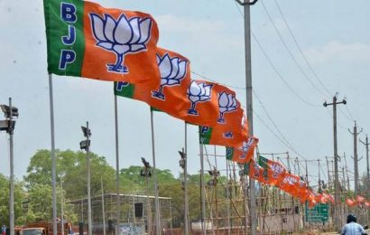BJP releases manifesto in Urdu for DDC polls in Kashmir