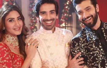 Naagin 5: Mohit Sehgal aka Jay's role to end soon?