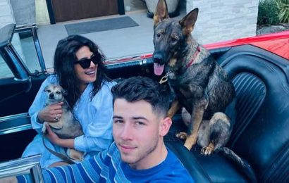 Priyanka Chopra is reunited with Nick Jonas after Matrix 4 shoot in Berlin, shares pics of her perfect family