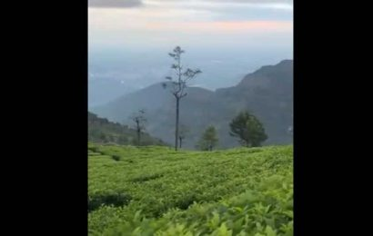 IAS officer shares video of stunning hills in Tamil Nadu. May fill you up with wanderlust