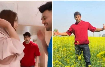 Sidharth Shukla channels his inner Shah Rukh Khan in Punjab, lives life country style, Shehnaaz Gill reacts. Watch
