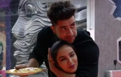 Bigg Boss 14 written update day 37: Jasmin Bhasin refused to save Rubina Dilaik over Aly Goni
