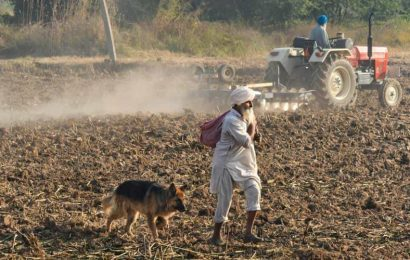 Paddy procurement up amid farmers' agitation